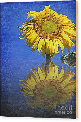 Sunflower Reflection Wood Print by Andee Design