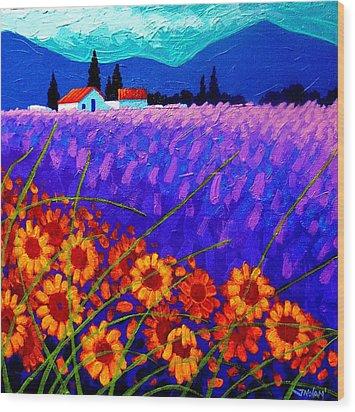 Sunflower Vista Wood Print by John  Nolan