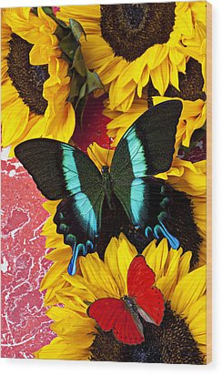 Sunflowers And Butterflies Wood Print by Garry Gay