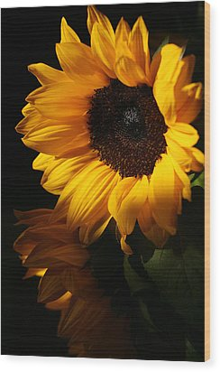 Sunflowers Wood Print by Dorothy Cunningham