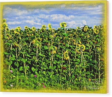 Sunflowers In France Wood Print by Joan  Minchak