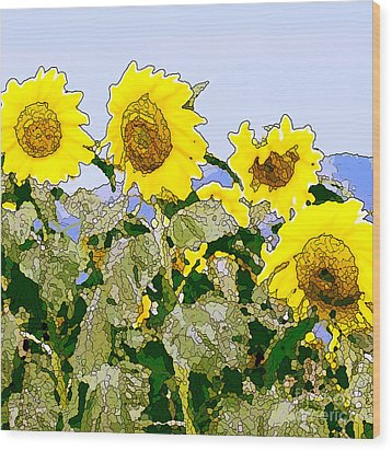 Sunflowers Sunbathing Wood Print by Artist and Photographer Laura Wrede