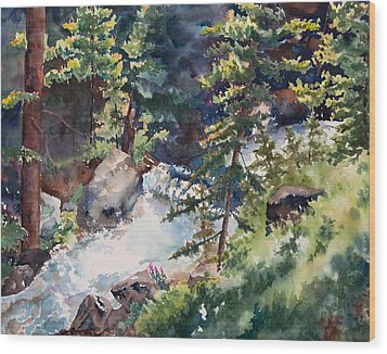Sunlight And Waterfalls Wood Print by Amy Caltry