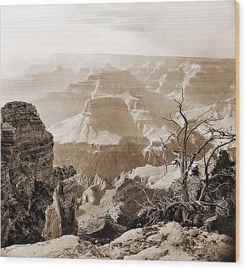 Sunlight In The Grand Canyon Wood Print by M K  Miller