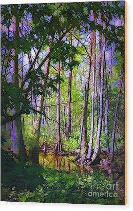 Sunlight In The Swamp Wood Print by Judi Bagwell