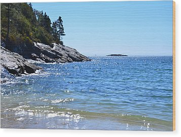Sunlight Reflections Along Sand Beach Acadia Park Maine Wood Print by Martin Rogers