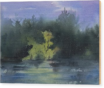 Sunlit Island Wood Print by Debbie Homewood