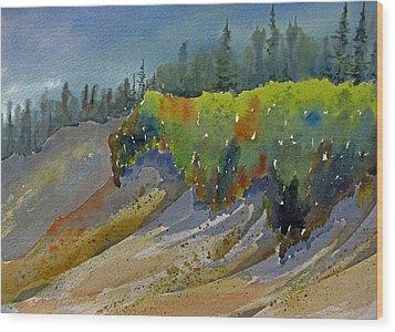 Sunlit Lichen Wood Print by Ramona Kraemer-Dobson