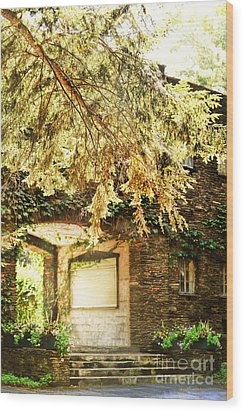 Sunlit Stone Building With Grapevines Wood Print by HD Connelly