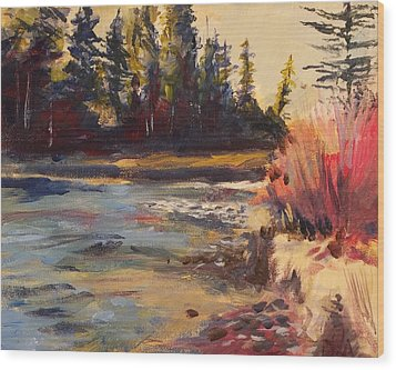 Sunny Colorado Wooded Stream Wood Print by Walt Maes