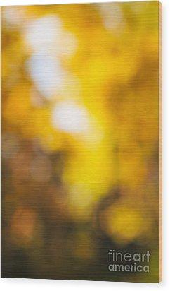 Sunny Fall Forest Wood Print by Elena Elisseeva