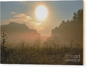 Sunny Side Up Wood Print by Sue Stefanowicz