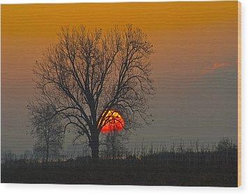 Sunrise - 4810 Wood Print