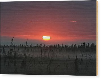 Sunrise At Kenai Peninsula Wood Print by Mary Gaines