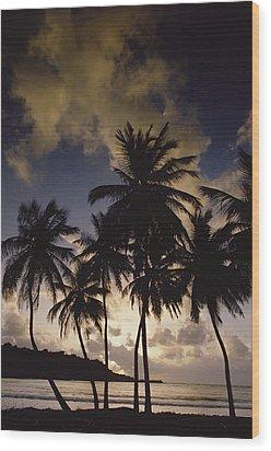 Sunrise At La Sagesse Bay Over Marquis Wood Print by Gerry Ellis