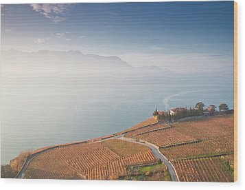 Sunrise At Lavaux Vineyard Terraces Wood Print by Harri's Photography