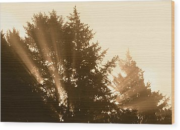 Sunrise In Sepia Wood Print