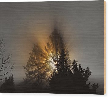 Wood Print featuring the photograph Sunrise by Irina Hays