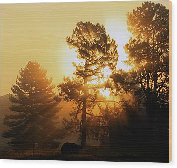 Sunrise Wood Print by Karen Harrison