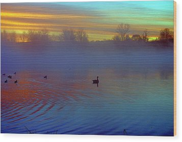 Sunrise On Duck Pond Wood Print by Laurie Prentice
