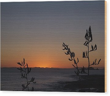 Wood Print featuring the photograph Sunrise On East Coast Of North Island 2 by Peter Mooyman