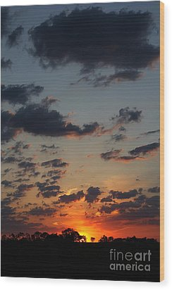 Wood Print featuring the photograph Sunrise Over Field by Everett Houser