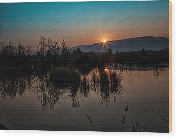 Sunrise Over The Beaver Pond Wood Print by Ronald Lutz