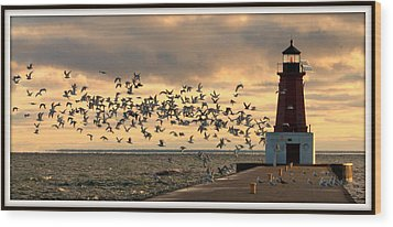 Sunrise Seagulls 219 Wood Print