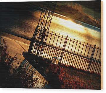 Sunrise Street Reflections Wood Print by Cindy Wright