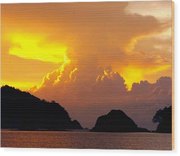 Sunscape Curu National Wildlife Park Costa Rica Wood Print