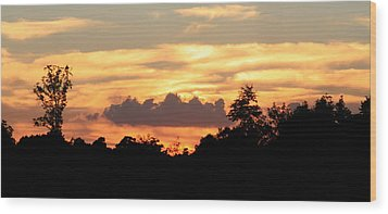 Sunset 1 Wood Print by Veronica Ventress