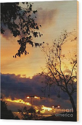 Wood Print featuring the photograph Sunset 2 by Jasna Gopic