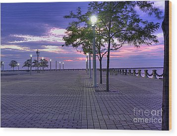 Sunset At The Plaza Wood Print by David Bearden