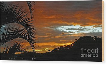 Sunset Behind The Palms Wood Print by Kaye Menner