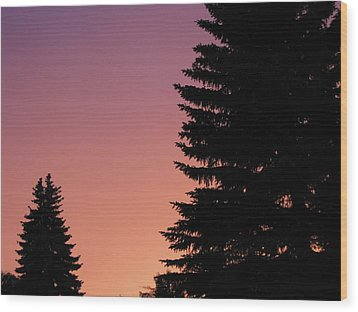Wood Print featuring the photograph Sunset Between Two Evergreens by Brian Sereda