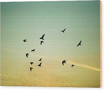 Sunset Birds Wood Print by Sarah Palmer