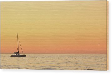 Sunset Cruise At Cape Town Wood Print by Tony Hawthorne