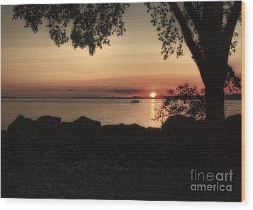 Sunset Cruise Wood Print by Pamela Baker