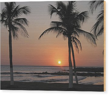 Wood Print featuring the photograph Sunset by David Gleeson