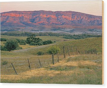 Sunset Glow On Flinders Ranges In Moralana Drive, South Australia Wood Print by Peter Walton Photography