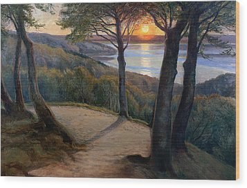 Sunset Wood Print by Hans Agersnap