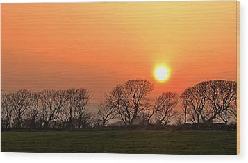Sunset In Dingle Wood Print by Barbara Walsh
