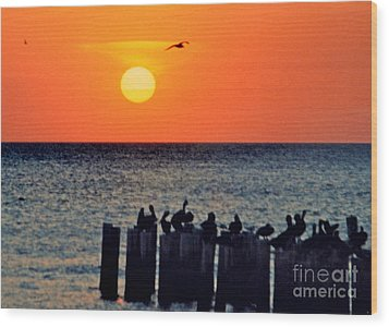 Wood Print featuring the photograph Sunset In Florida by Lydia Holly