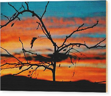 Sunset In Nevada Wood Print by Stephani JeauxDeVine