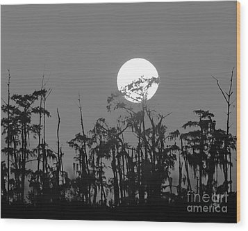Wood Print featuring the photograph Sunset In Swamp by Luana K Perez