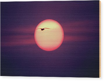 Sunset Wood Print by John Foxx