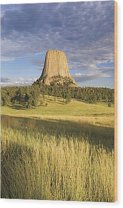 Sunset On Devils Tower Wyoming United Wood Print by Philippe Widling