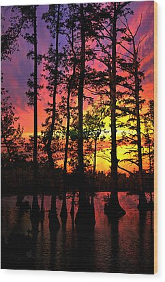 Sunset On Horseshoe Lake 1 Wood Print by Marty Koch