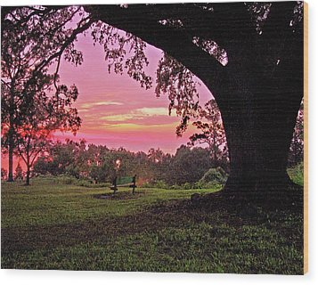 Sunset On The Bench Wood Print by Michael Thomas