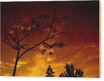 Sunset Over Florida Wood Print
